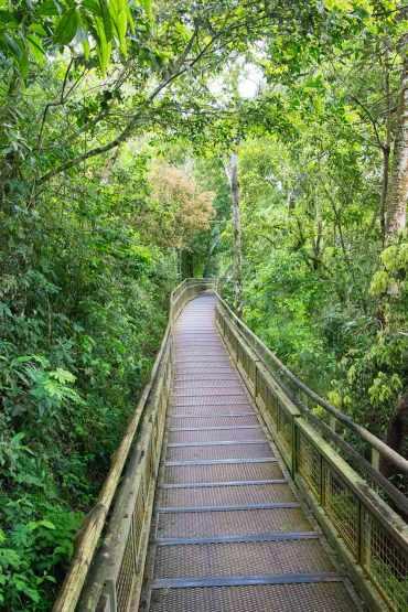 IguazuFalls_0384cc