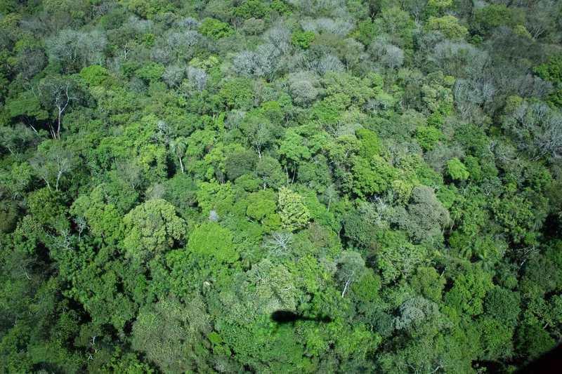 IguazuFalls_0817cc